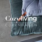 cozy_living